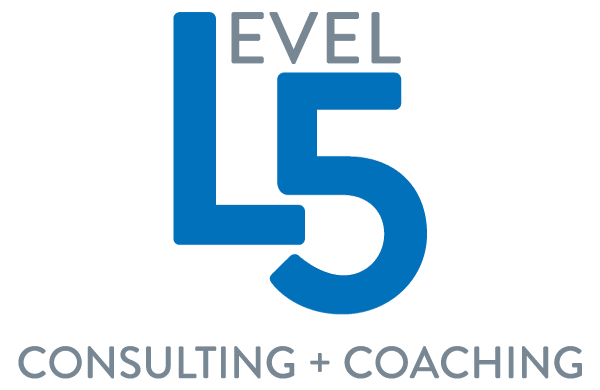 Level 5 Consulting